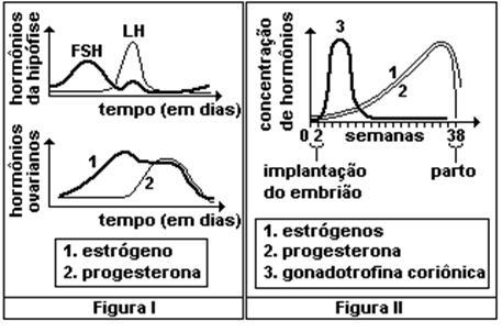 Orientações dermatológicas na estética relacionada ao melasma pós ... be89089d18
